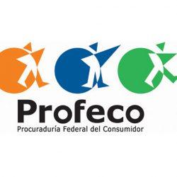 Se publica en el Diario Oficial REGLAMENTO DE LA LEY FEDERAL DE PROTECCIÓN AL CONSUMIDOR. 19/12/2019
